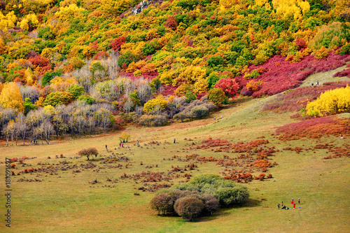 Aluminium Oranje Ther autumn colorful mountains scenic