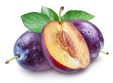 Plums with water drops. File contains clipping path. - 181103614