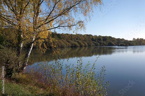 Poster étang de Bourgneuf en forêt de Rambouillet