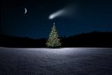 Weihnachtsbaum im Wald bei Nacht