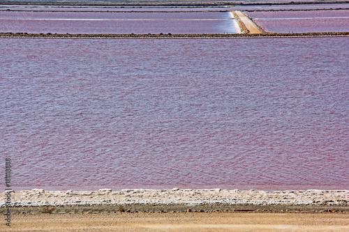 Staande foto Lavendel Marais salants en automne