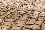 Without rain, dry land by drought - 181127806