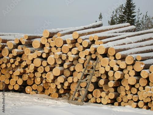 Foto op Canvas Brandhout textuur woodworking