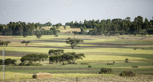 Fotobehang Farm fields and homes in Ethiopia
