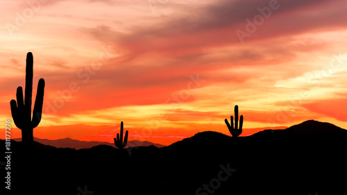 Fotobehang Koraal Southwest Desert - Colorful Sunset in Wild West Desert of Arizona with Cactus