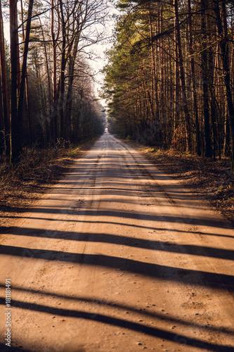 Fotobehang Weg in bos leśna droga