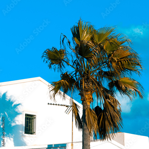 Papiers peints Iles Canaries Tropical island location. Palms and hotel. Minimal art