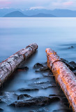 Two Calm logs - 181206257