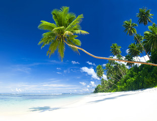 Tropical beach on Samoa