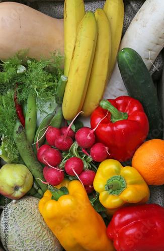 fresh vegetables just harvested Poster