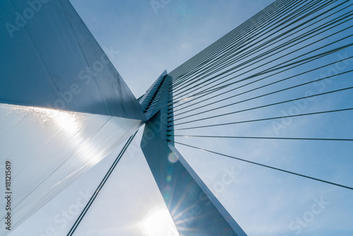 Foto op Aluminium Rotterdam Engineering detail abstarct cable stays of the Erasmus Bridge low point of view blue sky above