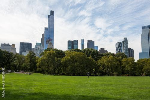 Foto op Aluminium New York Central Park in New York