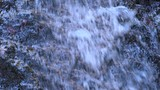 Flowing water stream waterfall in the Alpine mountains in the fall