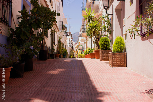 Poster Smal steegje Street. Spanish architecture. Marbella city, Costa del Sol, Andalusia, Spain.