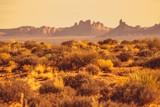 Arizona Desert Landscape - 181296649