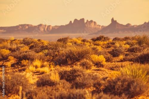 Plexiglas Arizona Arizona Desert Landscape