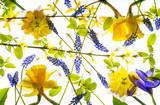 spring flowers - 181321401