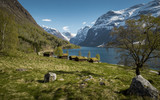 Idyllic landscape in Norway - 181324264