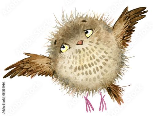 Foto op Aluminium Uilen cartoon cute owl. watercolor fschool books illustration
