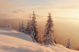 Dramatic wintry scene with snowy trees. - 181351290