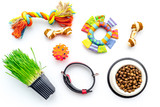 Toys for cat near dry food and grass in pot on white background top view