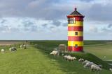 Deutschland,Niedersachsen,Krummhörn, der Leuchtturm von Pilsum. - 181385077