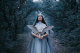 Mysterious sorceress in a beautiful blue dress calls for strength. The background is a cold forest in the fog. Girl with a white owl. Artistic Photography - 181398415