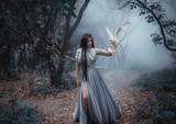 Mysterious sorceress in a beautiful blue dress. The background is a cold forest in the fog. Girl with a white owl. Artistic Photography - 181398449