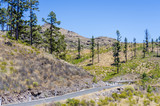 A road  among the Gran Canaria mountains.