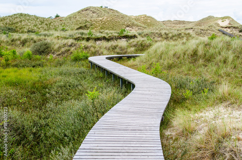 Foto op Canvas Zen wooden bridge in a meadow