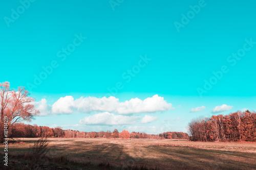 Tuinposter Turkoois Landschaft im Herbst mit Wiese und Wald