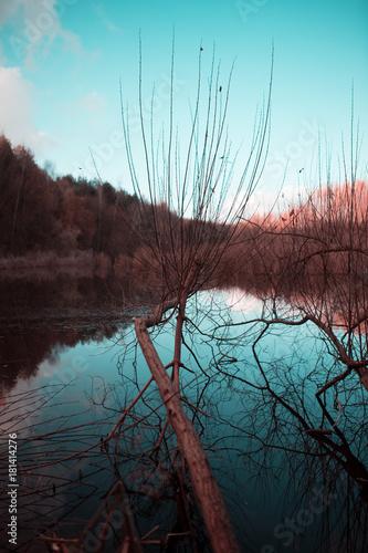 Plexiglas Turkoois Landschaft im Herbst am See im Wald zum Sonnenuntergang