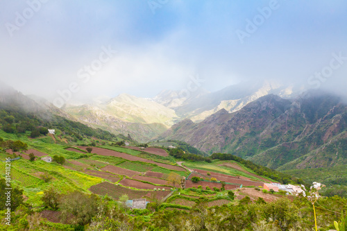 Deurstickers Canarische Eilanden terraced cultivations in Tenerife