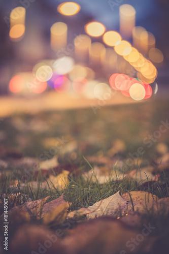 Keuken foto achterwand Gras Park mit Wiese und Blättern im Herbst, Abend, Lichtpunkte des Verkehrs im Hintergrund