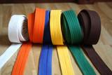 Martial Arts Colorful Karate Belt - 181446250