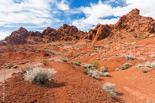 Foto op Canvas Koraal Valley of Fire