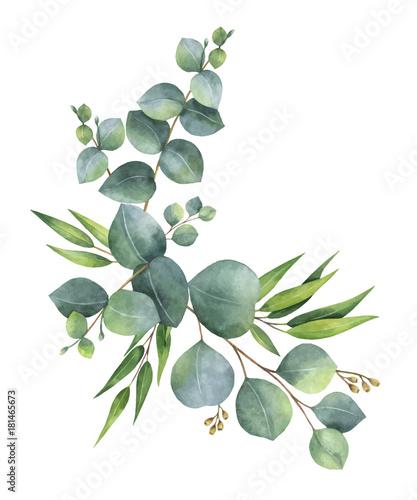 aquarellvektorkranz-mit-grunen-eukalyptusblattern-und-niederlassungen