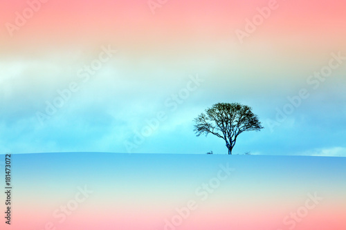 Plexiglas Lichtroze Winter landscape with tree.