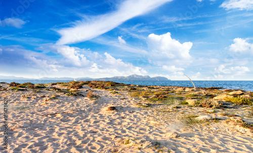 Deurstickers Canarische Eilanden Urlaub auf Mallorca: Auszeit, Ruhe, Meditation, Entspannung: Schöne Landschaft mit Aussicht am Meer :)