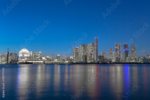 In de dag Tokio 東京ベイエリア 高層ビル群と夜景