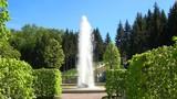 Sunny day in may in the Lower Park. Peterhof, Saint Petersburg - 181482859