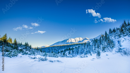 Wall mural Snowy peaks in Tatra mountains winter, Poland