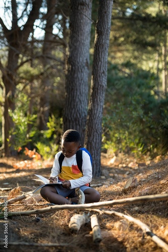 Boy studying in forest