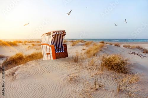 Leinwandbild Motiv Strandkorb in den Dünen bei Abendlicht