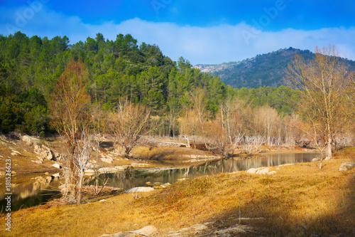 Plexiglas Bergrivier View of mountains river with forest riverside