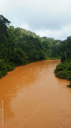 Fotobehang Weg in bos Río en la selva mas antigua del mundo