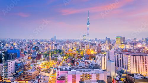 Staande foto Tokio Panorama shot of Tokyo city skyline