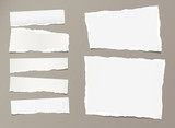 White ripped strips, notebook, note paper for text or message stuck on gray background. - 181598425