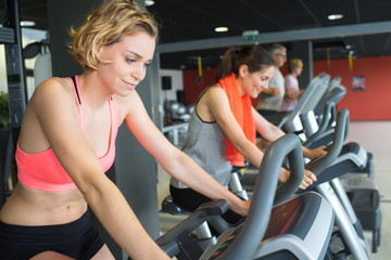 brunette girl and other females working out in sport club