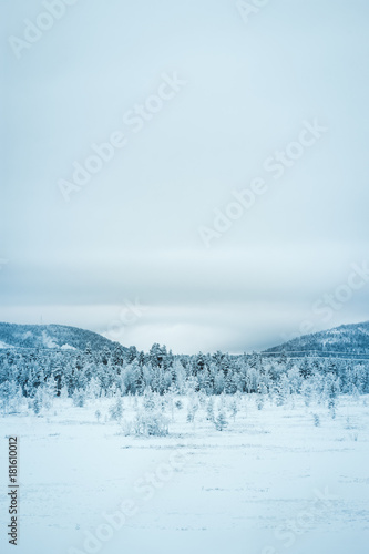 Deurstickers Lichtblauw Snowy mountains in lapland